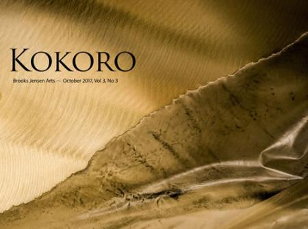 Kokorocover1107