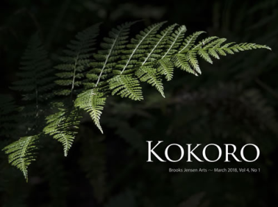 Kokorocover0309