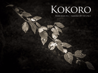 Kokorocover0302