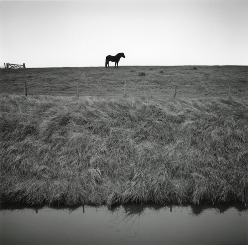 Hart from the series DRAINED. Paul Hart