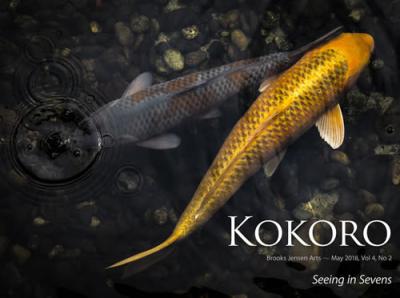 Kokorocover0508