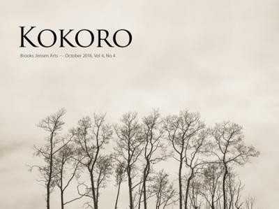 Kokorocover0404