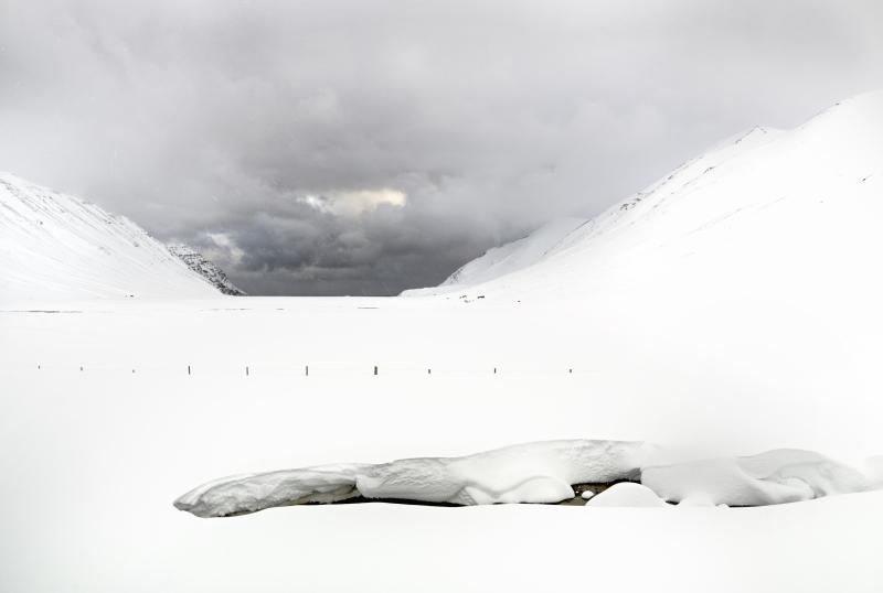 Folberg-White Winds 22