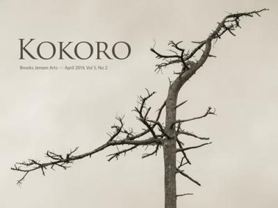Kokorocover0502