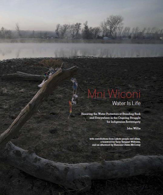Willis-book