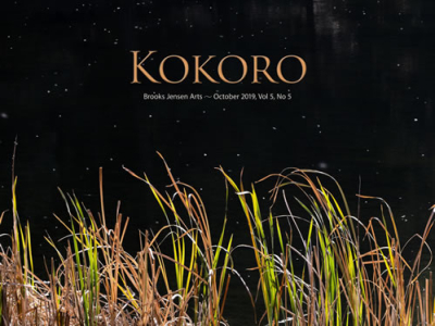 Kokorocover0505