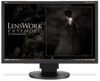 Lxt145-splash-page-with-monitor